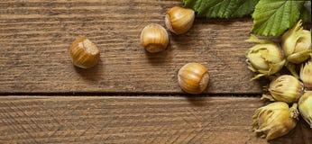 Hazelnuts na drewnie Obraz Royalty Free
