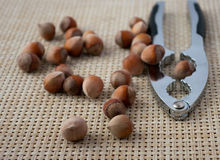Hazelnuts and nutcracker Stock Photos