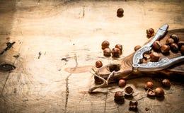Hazelnuts with Nutcracker on the Board. Royalty Free Stock Photography