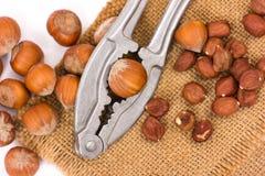 Hazelnuts and nutcracker Stock Photography