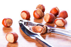 Hazelnuts with nutcracker Royalty Free Stock Photography