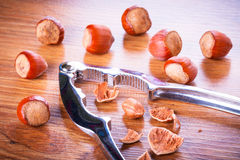 Hazelnuts with nutcracker Stock Photo
