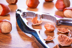 Hazelnuts with nutcracker Royalty Free Stock Images