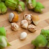 Hazelnuts in nuts shells Royalty Free Stock Photos
