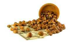 Hazelnuts nuts of Turkish hazel. The concept of hazelnut nuts as. Money earnings of dolars. Isolate on white background, copy space stock photography