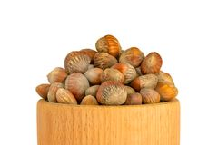 Hazelnuts nuts of Turkish hazel. The concept of hazelnut nuts as. Money earnings of dolars. Isolate on white background, copy space royalty free stock photo