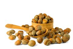 Hazelnuts nuts of Turkish hazel. The concept of hazelnut nuts as. Money earnings of dolars. Isolate on white background, copy space royalty free stock images