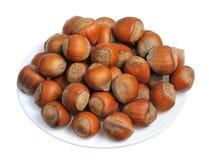 Hazelnuts, odizolowywający Obraz Royalty Free