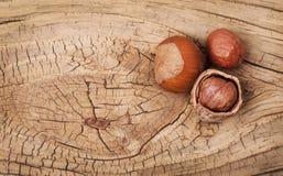 Hazelnuts on old wood background Stock Image