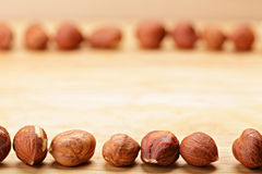 Hazelnuts in opposite rows Stock Photo