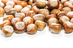 Hazelnuts. Organic hazelnuts  close up Stock Image