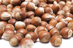 Hazelnuts over white. Close-up view of hazelnuts Royalty Free Stock Photography