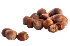 Hazelnuts over a white background. Some hazelnuts placed over a white background stock images