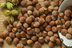 Hazelnuts. On a paper background Royalty Free Stock Photo