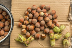 Hazelnuts. On a paper background Royalty Free Stock Images