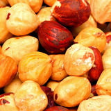 Hazelnuts pattern Royalty Free Stock Image