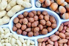 Hazelnuts and peanuts Stock Photos