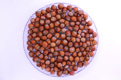 hazelnuts on the plate Royalty Free Stock Image