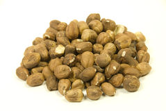 hazelnuts prepared for eating raw or baking Royalty Free Stock Images