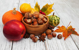 Hazelnuts and pumpkins Stock Image