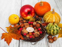 Hazelnuts and pumpkins Royalty Free Stock Photography