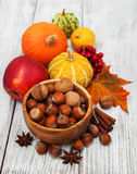 Hazelnuts and pumpkins Stock Photos