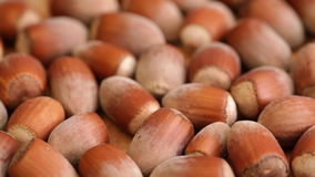 Hazelnuts at rotating stand closeup stock video