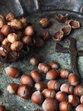 Hazelnuts rozpraszali na starym metalu półmisku, tongs dla dokrętek i Fotografia Stock