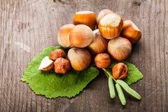 Hazelnuts rozsypisko Obraz Stock