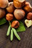 Hazelnuts rozsypisko Zdjęcie Stock