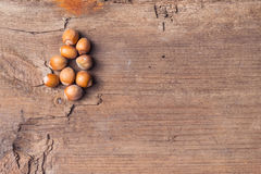 Hazelnuts on a rustic wooden table. Abstract background Stock Image