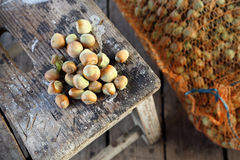 Hazelnuts in a sack Royalty Free Stock Photo