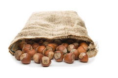 Hazelnuts in a sack Royalty Free Stock Photography