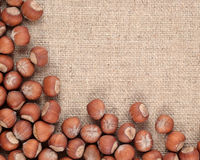 Hazelnuts in a sacking Stock Images