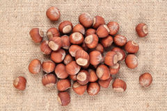 Hazelnuts in a sacking Royalty Free Stock Photos