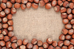 Hazelnuts in a sacking background Royalty Free Stock Photography