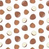 Hazelnuts seamless pattern. Hand drawn vector. Stock Photo