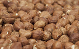 Hazelnuts. Selective Focus Royalty Free Stock Images