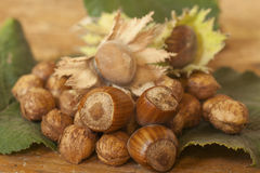 Hazelnuts. Served on table top Stock Photo