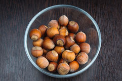 Hazelnuts in the shell. Fistful of brown hazel nuts in the glass cup Royalty Free Stock Image