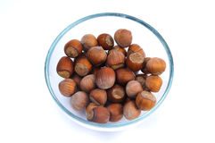 Hazelnuts in the shell. Fistful of brown hazel nuts in the glass cup isolated Stock Image