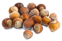 Hazelnuts in the shell. Fistful of brown hazel nuts isolated with white background Stock Photos