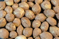 Hazelnuts without shells-background Stock Images