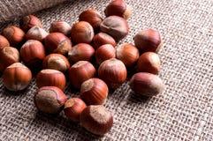 Hazelnuts in shells on the burlap Stock Photo