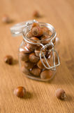 Hazelnuts in small glass jar Royalty Free Stock Photography