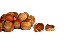 Hazelnuts and splintered nuts isolated Stock Photo