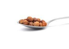 Hazelnuts  on spoon Royalty Free Stock Photography