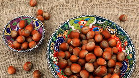Hazelnuts stock video