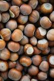Hazelnuts Tonda. Close up view Stock Photos