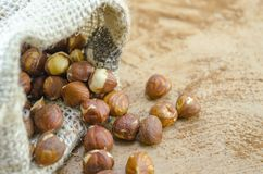 Hazelnuts in a vintage bag Royalty Free Stock Image